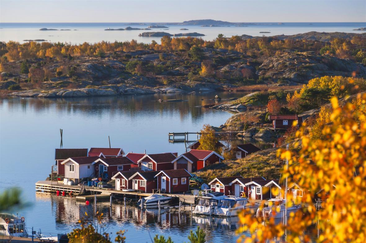 دانشگاه های موردتایید وزارت علوم درسوئد سپتامبر 2020