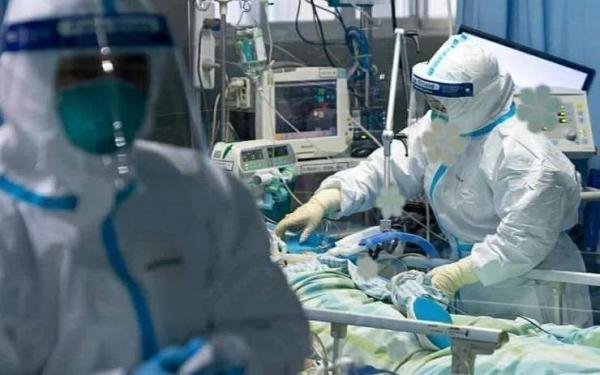 خبرنگاران رئیس بهداشت دشتی: شرایط کرونایی این شهرستان شکننده است